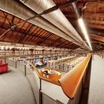 Kadir Has University Library